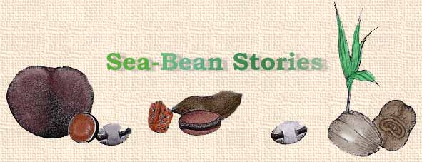 Sea-Bean Stories